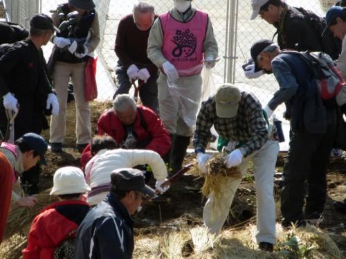 三島玉沢インターチェンジ周辺で開催された記念植樹会の様子